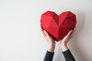 female hands holding up a model of a red heart